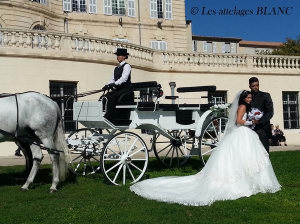 laissez vous emporter par le romantisme dun mariage en calche - Mariage En Caleche